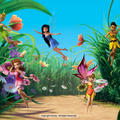 Disney Fairies Artwork